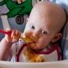 Рекомендации по вводу прикорма