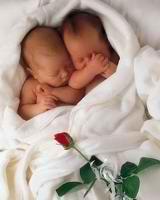 Как запланировать рождение двойни