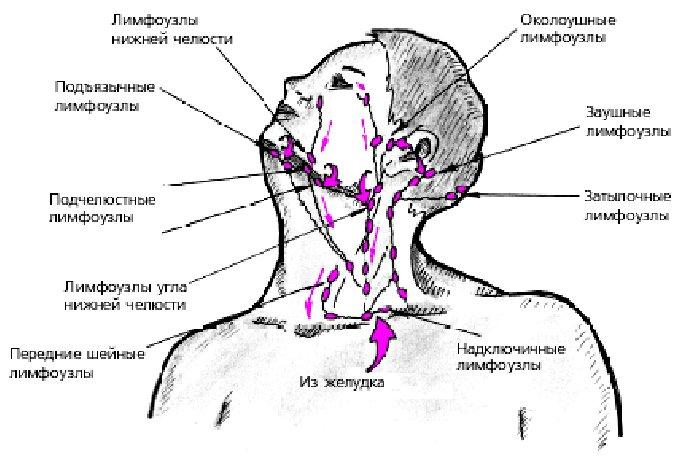 Почему увеличиваются лимфатические узлы