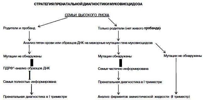 Анализы крови на муковисцидоз анализ крови на тиф