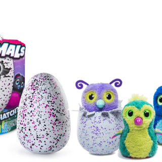 where-to-find-hatchimals-cover