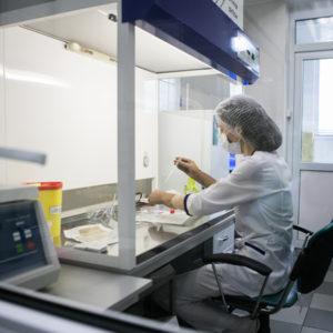 Анализ фрагментация ДНК сперматозоидов и его цена в Киеве